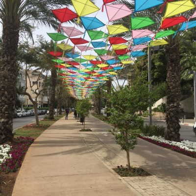 A public art installation of a collection of different coloured kites, laying flat in row, and suspended above a street footpath in Tel Aviv